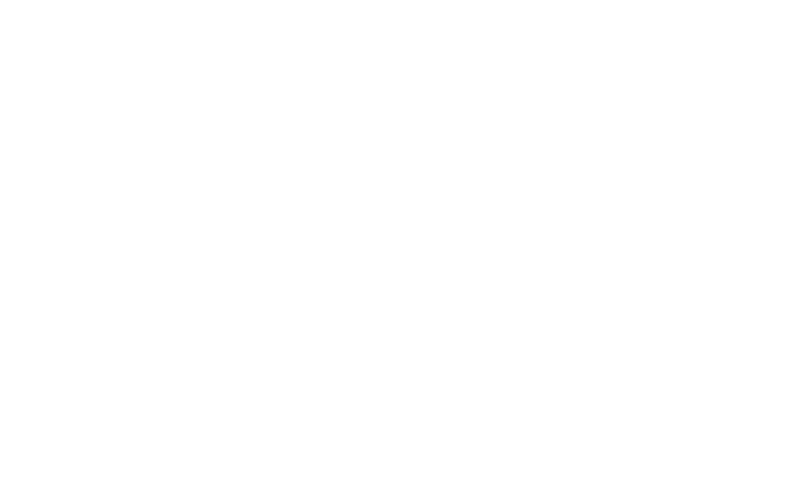 D-Star Instruments